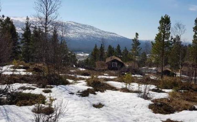 Stenseth Hyttefelt – Høring og offentlig ettersyn