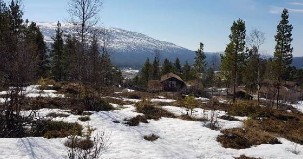 Stenseth_hyttefelt_os_kommune